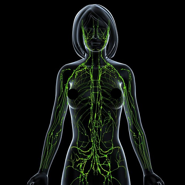 Cleaning out the Lymphatic system