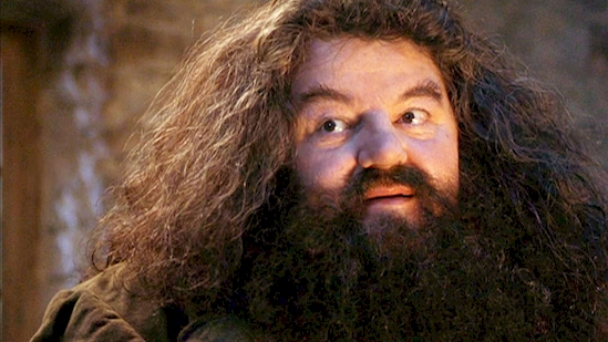 Hagrid in harry potter