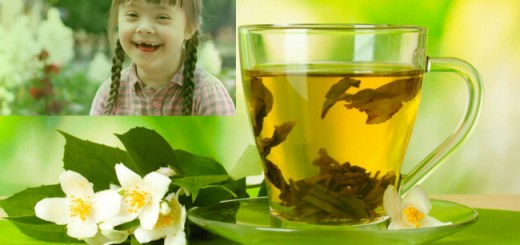 New study discovers that Green Tea may treat down syndrome