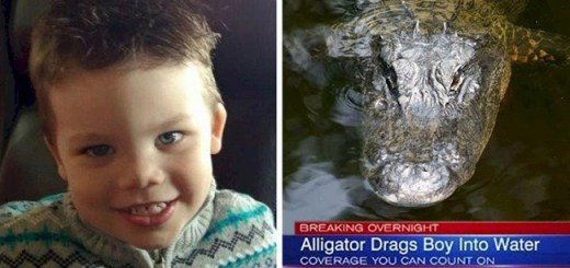 This mother's response to all 'Perfect Parents' after boy was killed by an alligator in Disneyworld