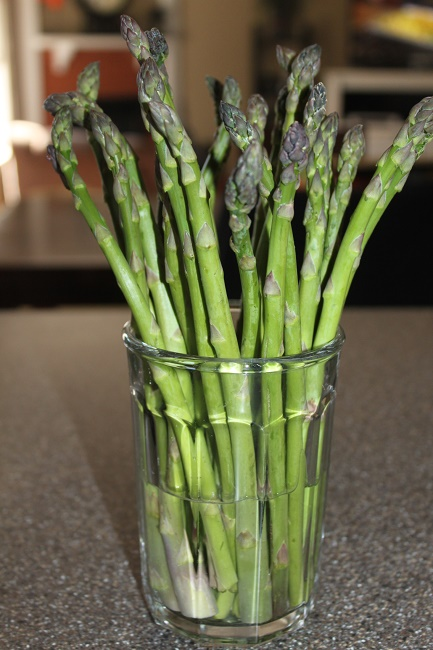 Asparagus should be stored