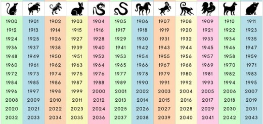 Check out the 12 signs of the Chinese zodiac. See what it says about you