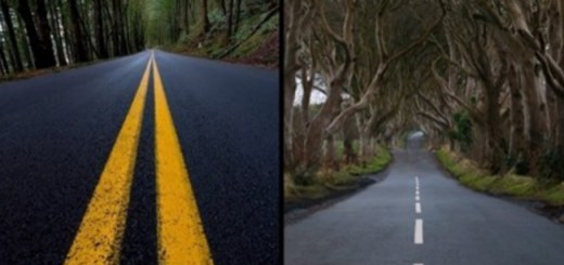 Why some roads have white markings and some have yellow. Know the reason