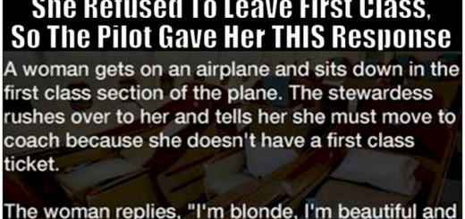 See a brilliant reply from a copilot to an unruly passenger