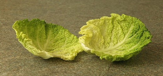 The reason why women put cabbage leaves on their breasts will surprise you