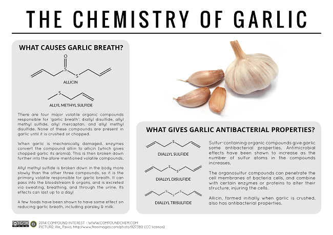 Why garlic helps your body