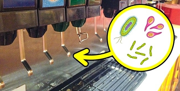 Soda fountains are extremely dirty