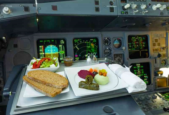 What is the diet of pilots