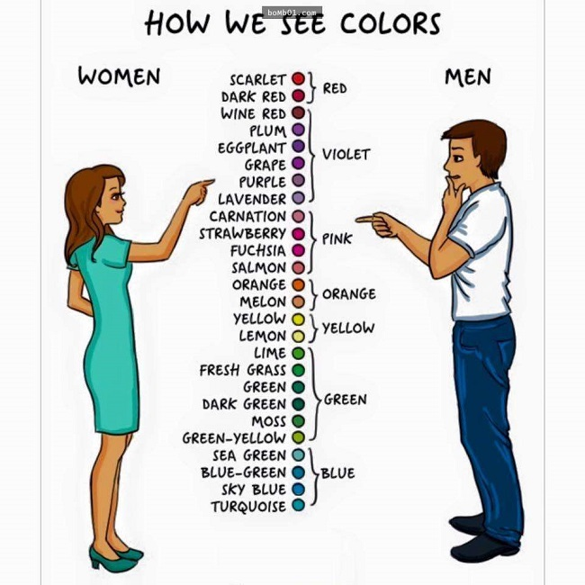 How we see the colors