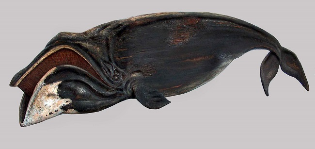 The bow Headed Whale