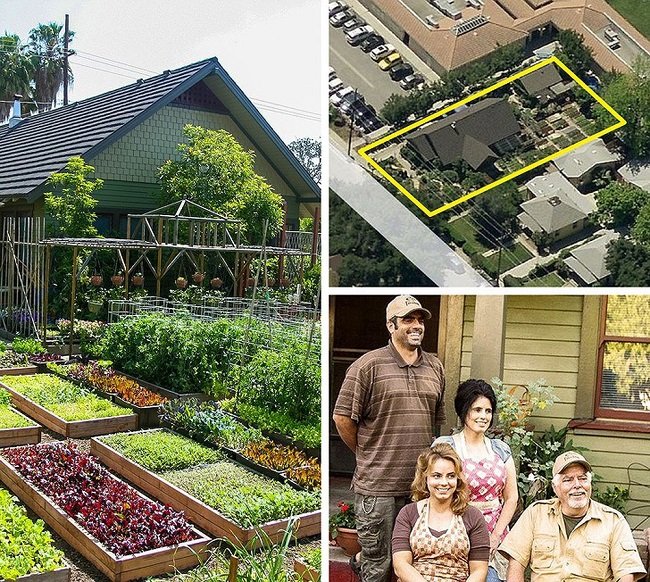 Family grows vegetables