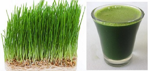 15 Amazing Health Benefits of Wheatgrass Juice That Few People Have Heard About