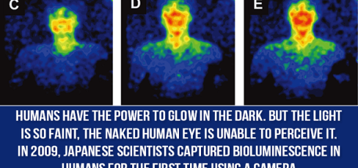 You Did Not Know That These Fascinating Phenomena Take Place Inside The Human Body