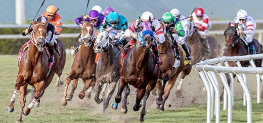 These Are Most Prestigious Events in Horse Racing
