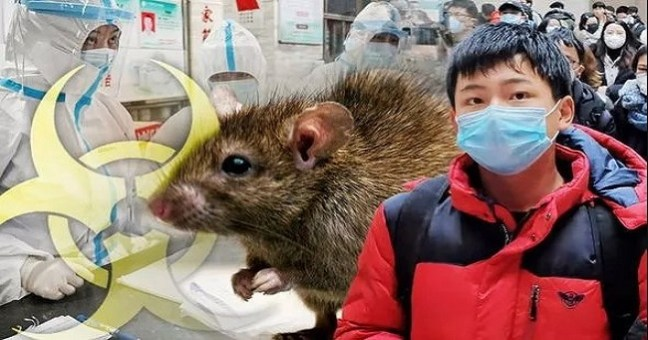 Chinese City Warns of New Epidemic for Plague After Herdsman Is Infected with The Black Death
