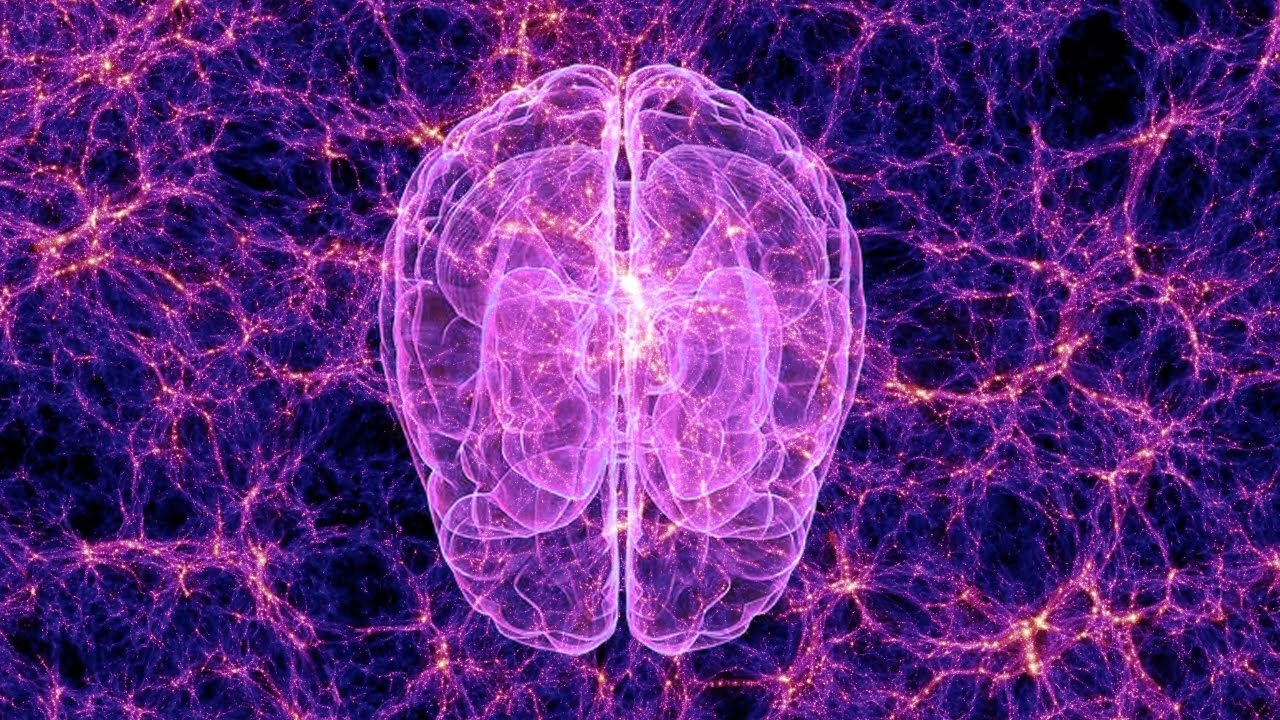 Scientists Uncover a Higher State of Consciousness