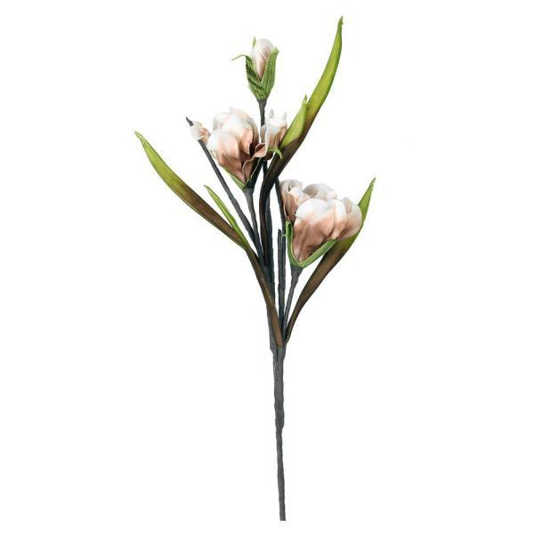 Konstväxt Växt blomma Beige