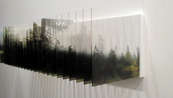 Image result for photographic installation