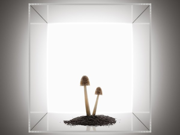 Recom-Arthouse-Sq-cgi-tom-price-5