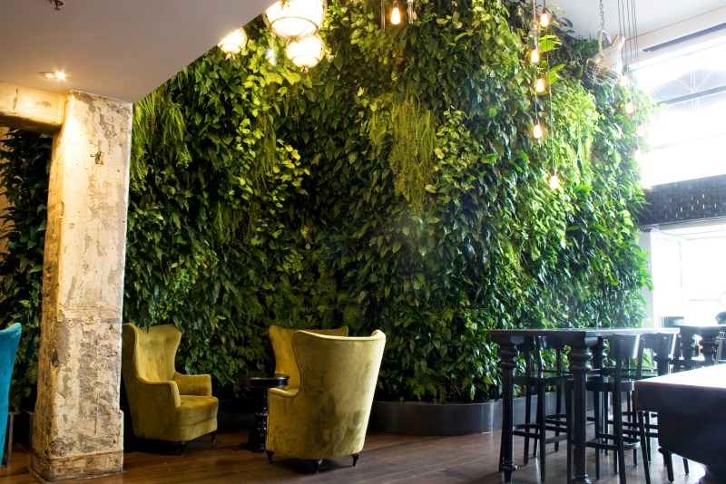 Woolly-vertical-wall-planting-3