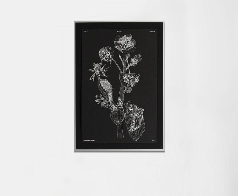 marcin_rusak_botanical_monoprint_ii-03