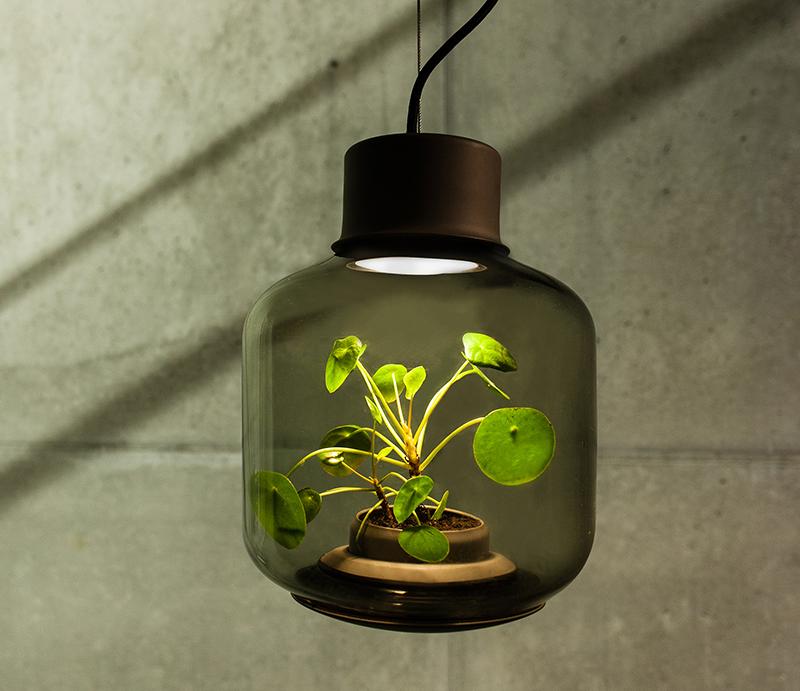 plants-in-windowless-spaces-we-love-eams-1