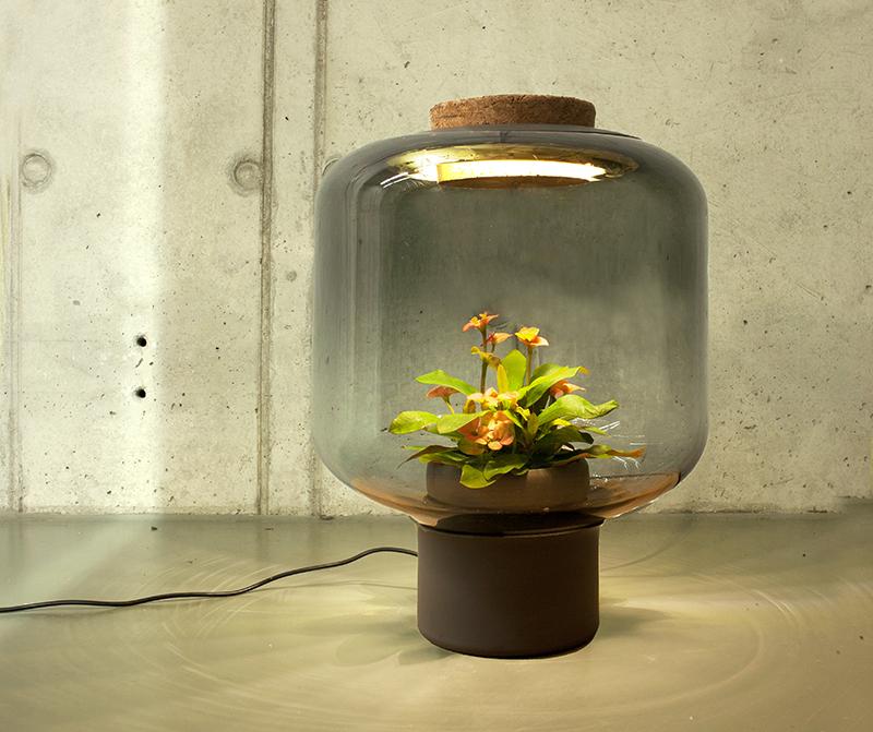 plants-in-windowless-spaces-we-love-eams-2