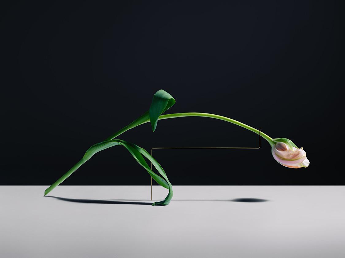 Carl-Kleiner-postures-series-6