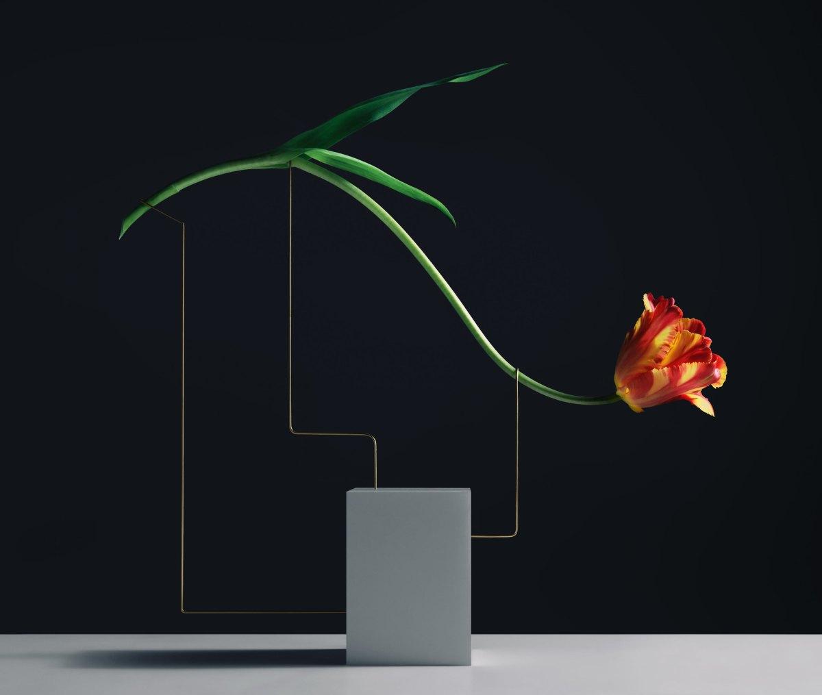 Carl-Kleiner-postures-series