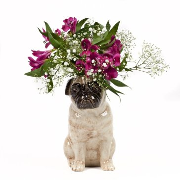 Pug_flowervase_fawn_small_1_1024x1024
