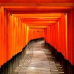 京都 人気の寺院めぐりコース
