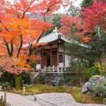 京都 嵯峨野の紅葉狩り 宝厳院の庭園