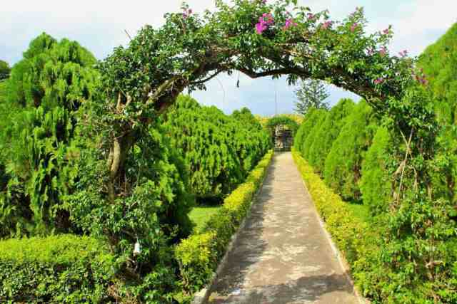 Vacation spots to visit on a budget; Jhalobia parks and gardens