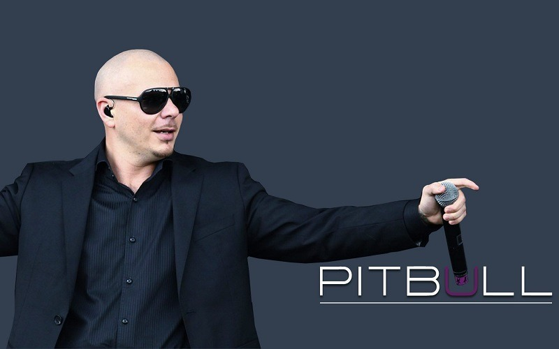 Pitbull net worth