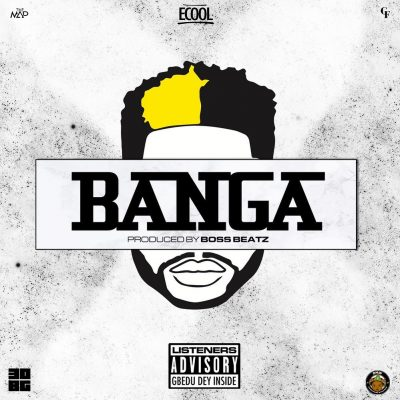 DJ ECool Banga Music Mp3 Download