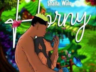 Shatta Wale Horny Music Mp3 Download