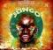 Native Tribe Jungo Original Mix Music Mp3 Download