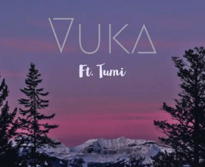 Phonomental MusiQ Vuka Mp3 Download