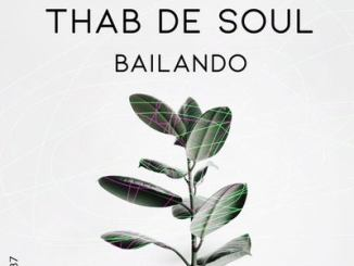 Thab De Soul Bailando Mp3 Download