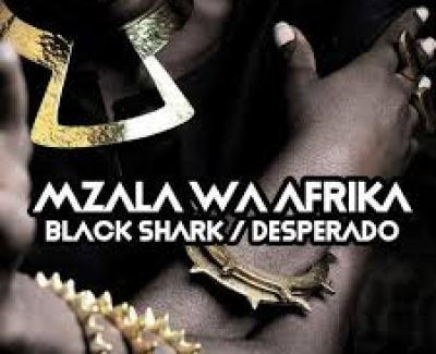 Mzala Wa Afrika Black Shark Mp3 Download