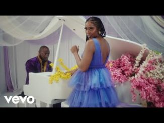 Tiwa Savage Park Well Download