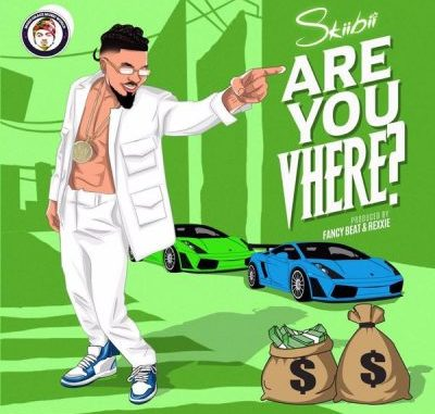 Download Are You Vhere Mp3 by Skiibii