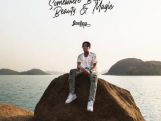 Joeboy Somewhere Between Beauty & Magic Album Download