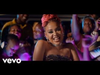 Sho Madjozi Shahumba Video Download