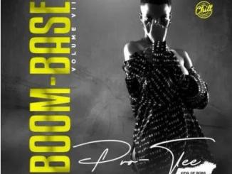 Pro-Tee Boom-Base Vol 7 Album Download