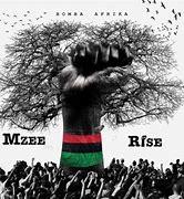 Mzee House Negro MP3 Download