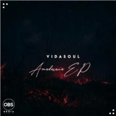 Vida-Soul Amadamara Album Download
