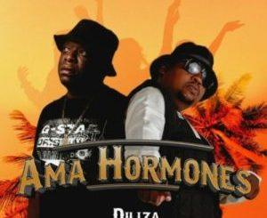 Diliza Ama Hormones MP3 Download