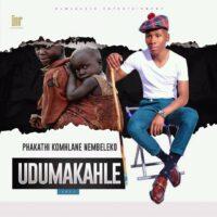 Dumakahle Phakathi Komhlane Nembeleko MP3 Download