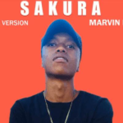 Marvin Larrys Sakura MP3 Download